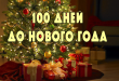 100 дней до Нового года!