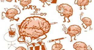 5 интересных способов держать мозг в тонусе