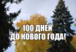 Опять 100 дней до Нового года