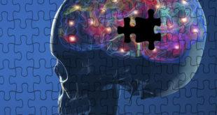 5 способов восстанавливать клетки Вашего мозга
