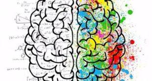 Забывчивость — признак высокого интеллекта