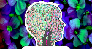 14 способов, которыми мозг обманывает вас, чтобы избежать перемен