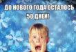 #Стодневка. 50 дней до НГ