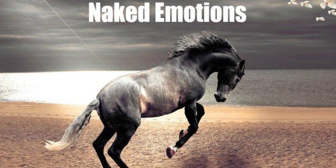 Голые эмоции. Как писать лучше