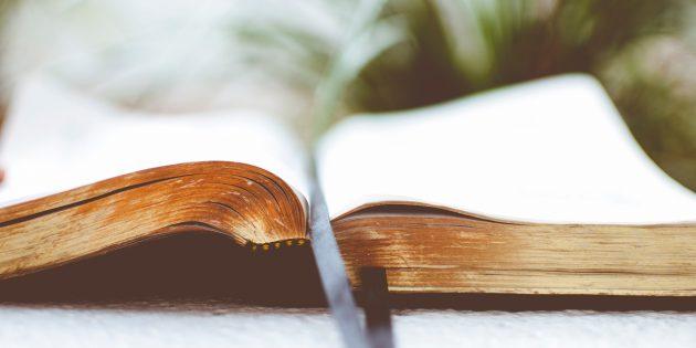 8 причин читать больше художественной литературы
