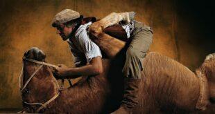 Лошадь сдохла — слезь!